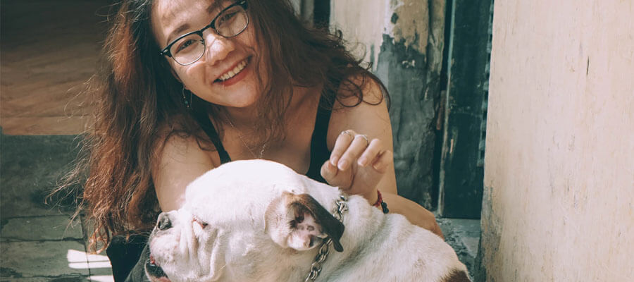 Featured image 5 Typical Traits of the American Bulldog Good companion - 5 Typical Traits of the American Bulldog